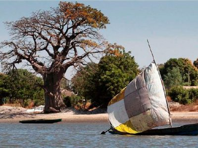 Senegal e Guinea Bissau