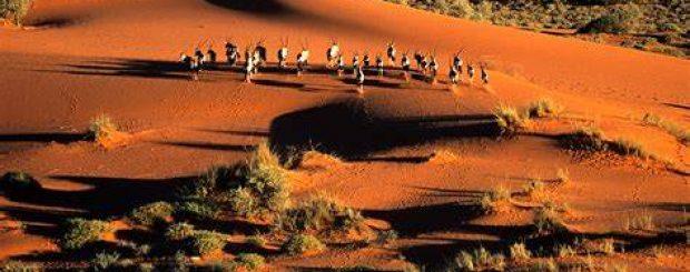 NAMIBIA RAINBOW